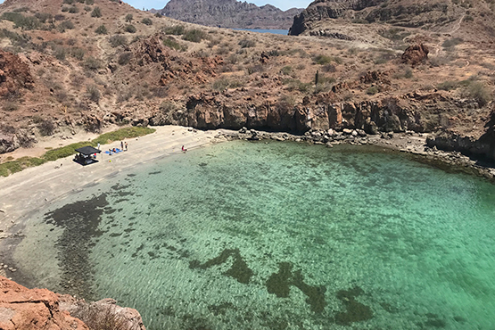 danzante island beach in loreto mexico