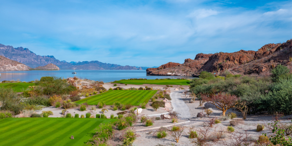 TPC Danzante Bay's Dazzling 18 – An Alternative to Cabo San Lucas Golf