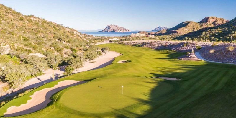 What does TPC stand for - TPC Danzante Bay