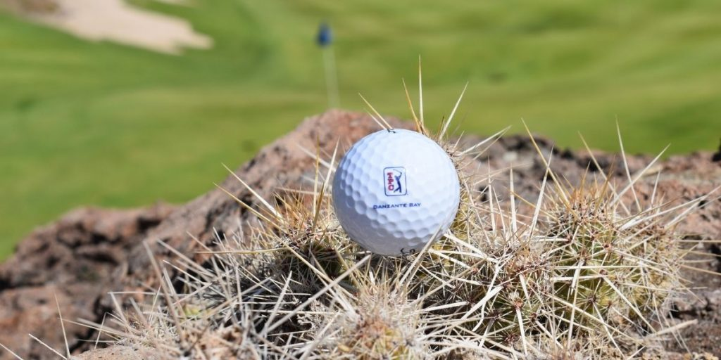 Cactus on the Course