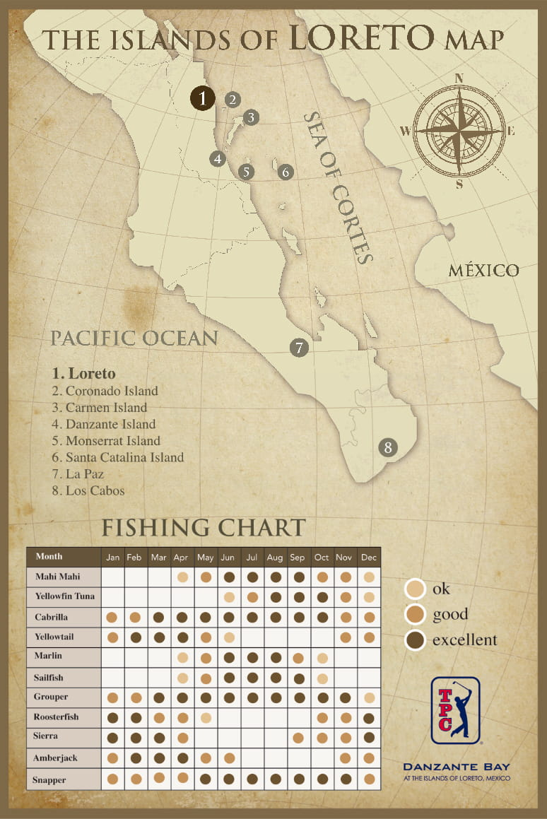Fishing Species in Loreto Chart by Month